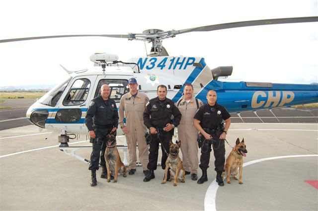 K9 Armor covered Richmond PD K9 Bosco, Ronin and Rasp thanks to donations