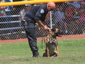 Click to open slideshow K-9 Armor at Petaluma PD K9 Trials