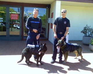 Click to open giant image Raven and Kyto of Novato PD