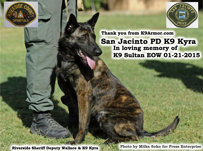 K9 Armor is honored to protect San Jacinto PD K9 Kyra