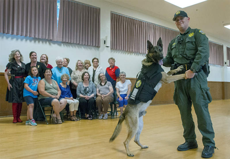 Sonoma PD Officer Jeff Sherman and K9 Dickie showing off his K-9 Armor vest donated by the Ladies Auxiliary of VFW Sonoma