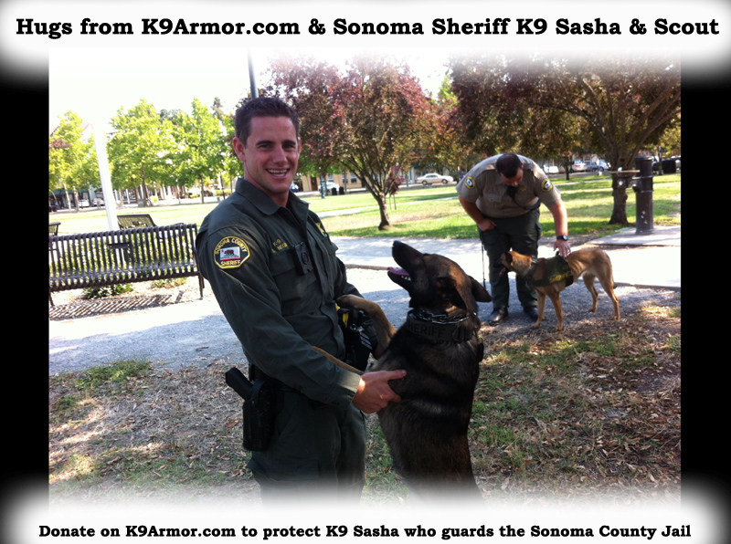 Hugs from Sonoma Sheriff K9 Sasha and Scout. Donate on K9Armor.com to protect K9 Sasha (in the background) who guards the Sonoma County Jail.