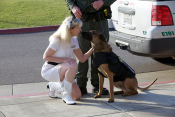 Open big picture Sonoma County Sheriff K9 Axl and K-9 Armor cofounder Suzanne Saunders